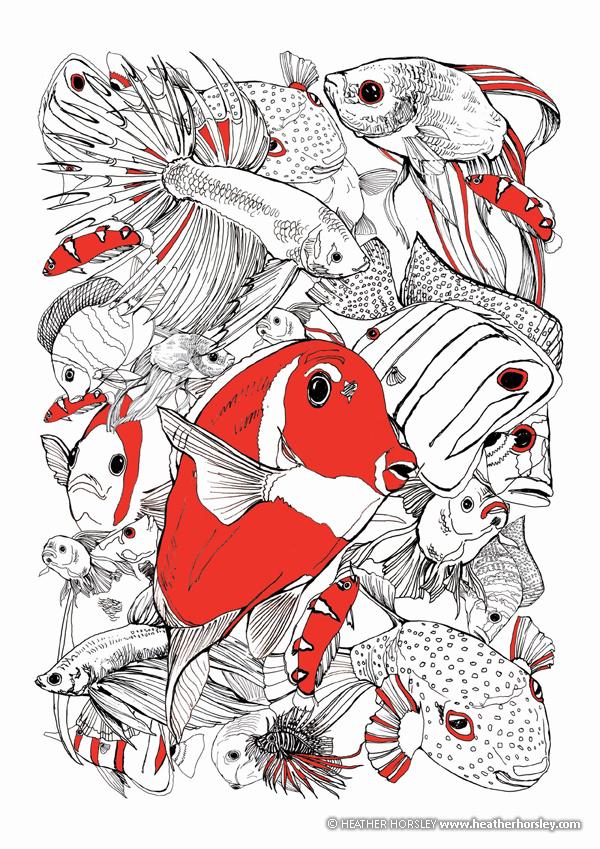 vertebrates-fish